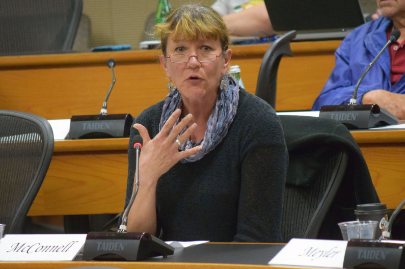 Susan McConnell at Faculty Senate meeting