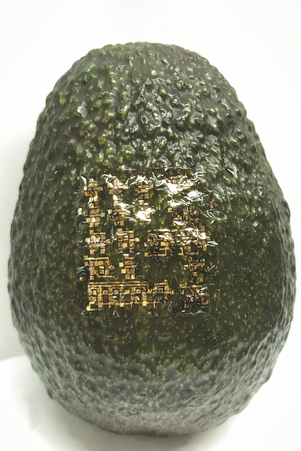 Flexible, biodegradable semiconductor on an avacado