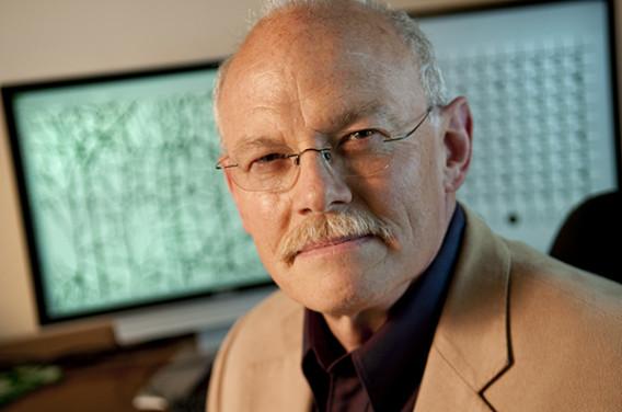 Jay McClelland, professor of psychology (Photo: Linda Cicero)