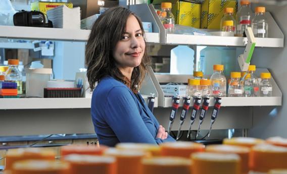 Christina Smolke (Photo credit: Rod Searcey/Stanford Engineering)