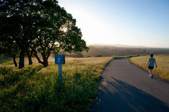 Bay Area hiking path