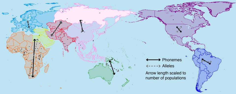 This map shows the dispersal of phonemes in comparison with dispersal of genetic traits.