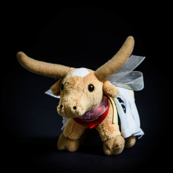 Stuffed animal bull with a note attached