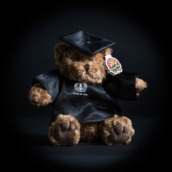 Teddy bear wearing a 2016 cap and gown