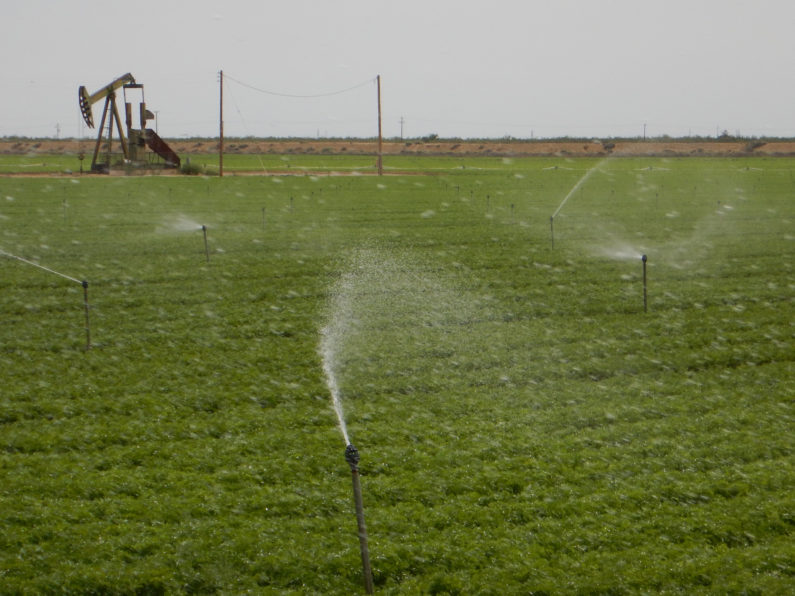 Irrigated field and oil pump in Kern County