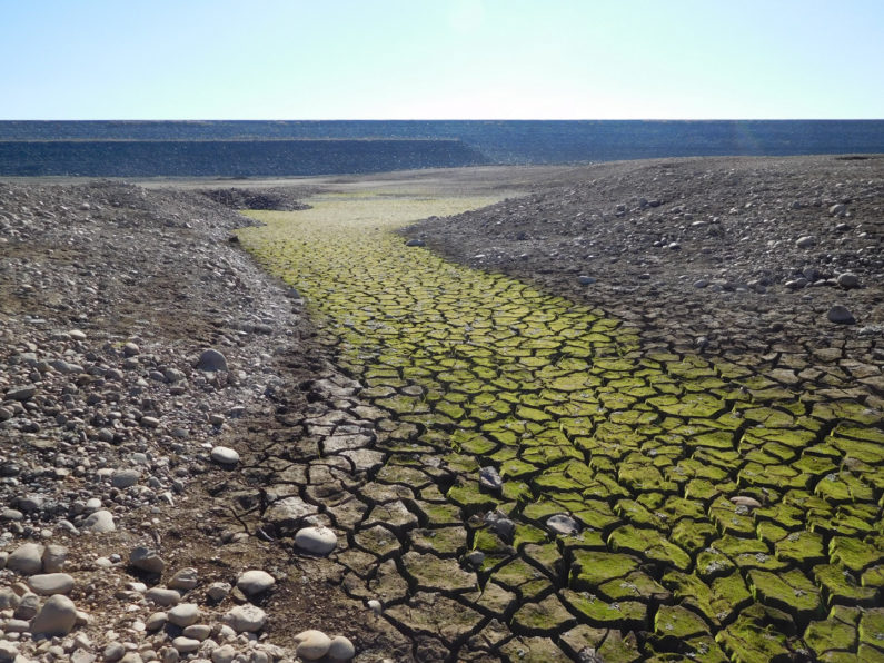 closeup of dry lakebed at California's Folsom Lake in the midst of record drought