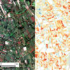 Image of maize farm plots in Western Kenya taken by Terra Bella satellites (left) and an agricultural yield map (right) generated from the same image using machine learning algorithms.