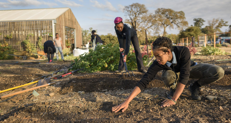 Paula Reyna Small and Adorie Anika Howard work in the garden