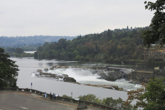 The Willamette falls along the Columbia river