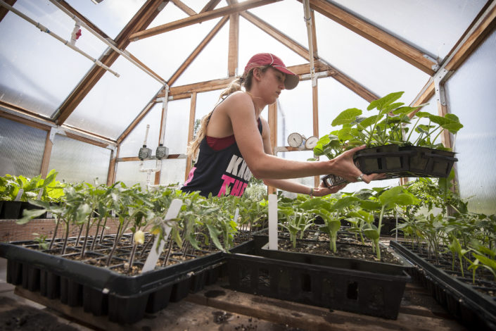 A student cares for the seedlings in the hothouse.)