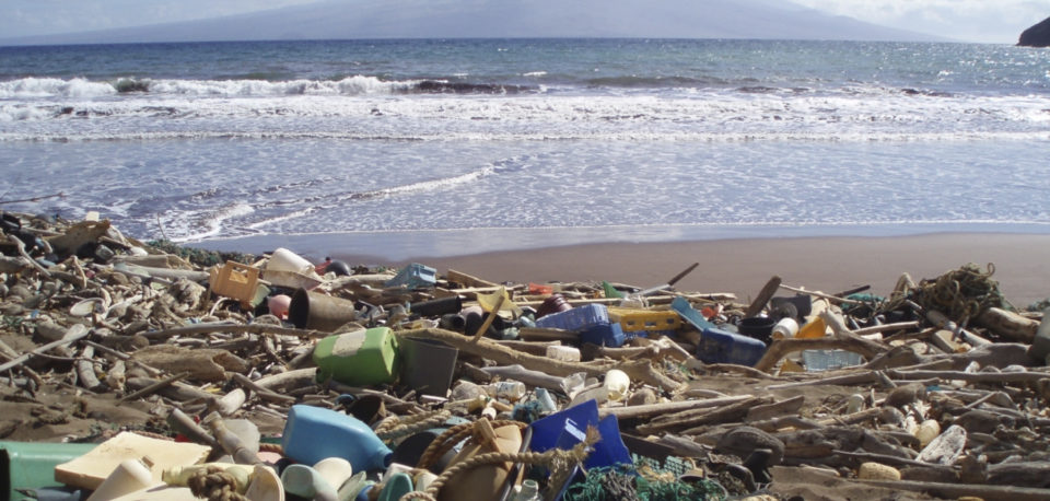 Marine debris on a beach in Hawaii