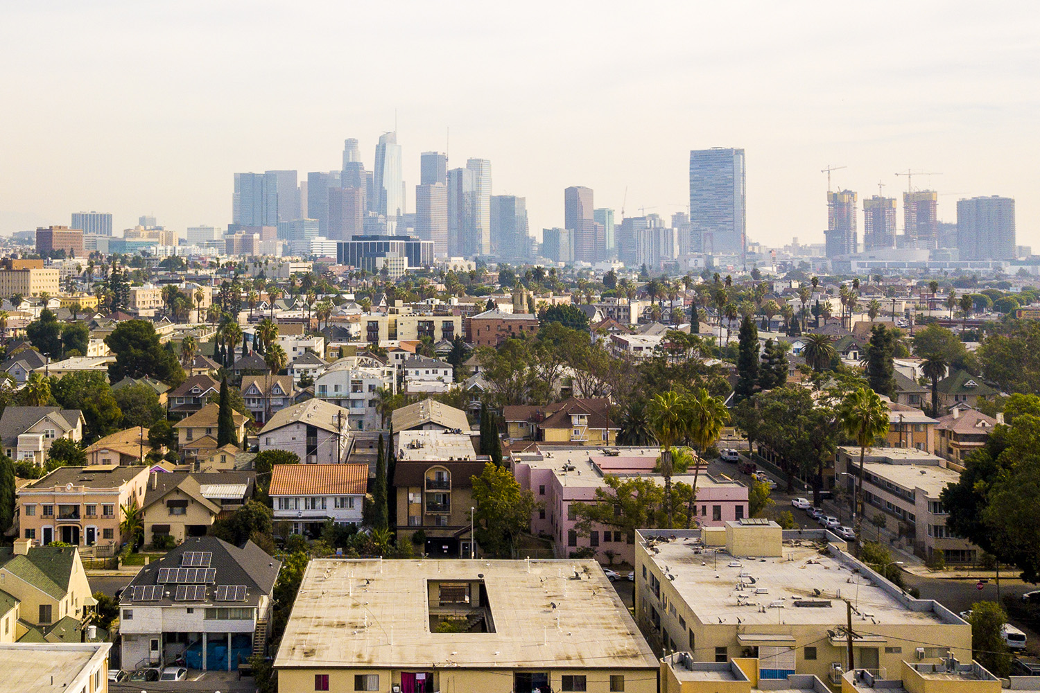 Los Angeles downtown skyline with residential area in foreground