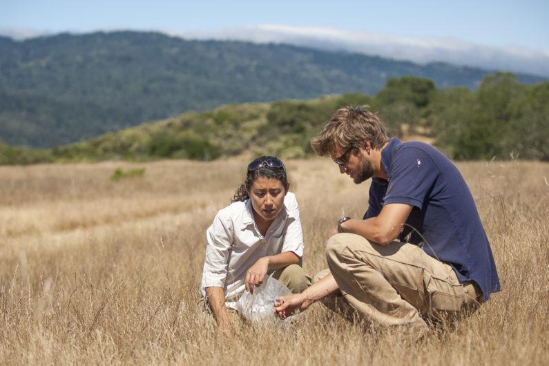 Cristina Salvador and Ryan Navratil at Jasper Ridge