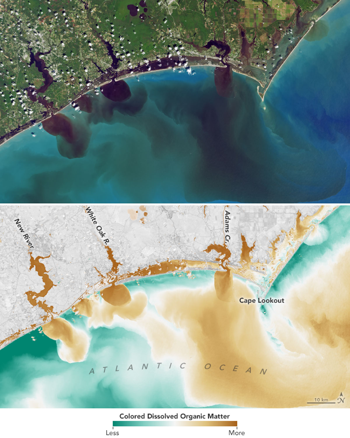 Satellite images of river outflows to the Atlantic Ocean in the wake of Hurricane Florence show water discolored by debris including pollutants spilled by hog farms.