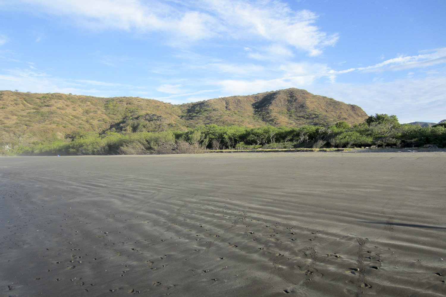 A transitional area between beach, mangroves, and grasslands–regions that host unique plant and animal communities–in Costa Rica.