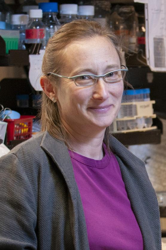 Biology Professor Judith Frydman.