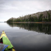 Lauren Oakes paddles to a research site in Alaska.