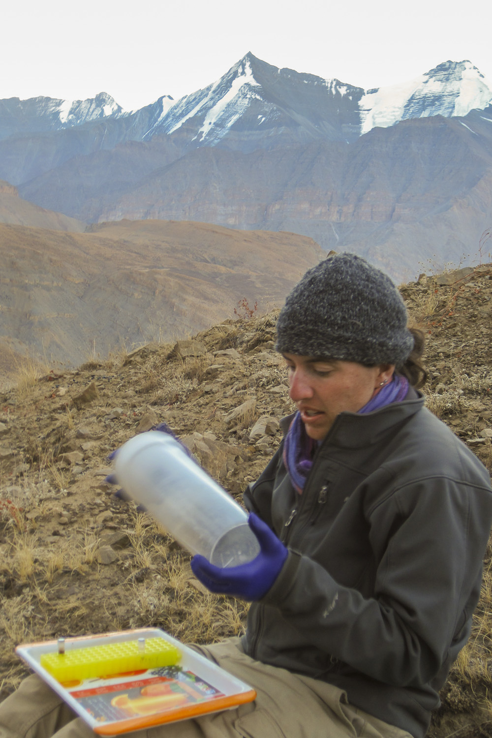Solari in the field holding a container designed to hold spaghetti in which she sedated the pikas