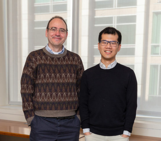Richard Braatz, left, and William Chueh