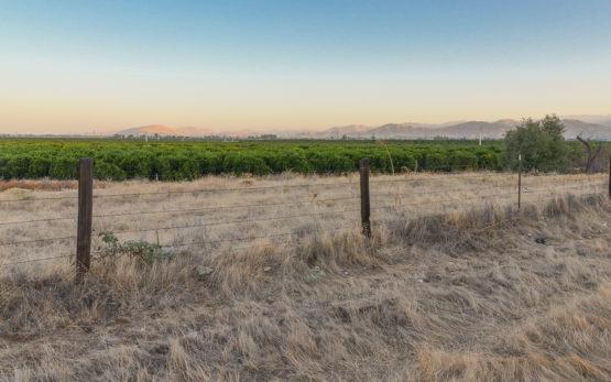 Farmland in Tulare County, California