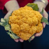 A woman holds fiber-rich vegetables.