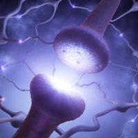 synapse transmitting signal