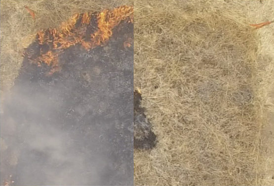 Stanford researchers have developed a gel-like fluid to prevent wildfires