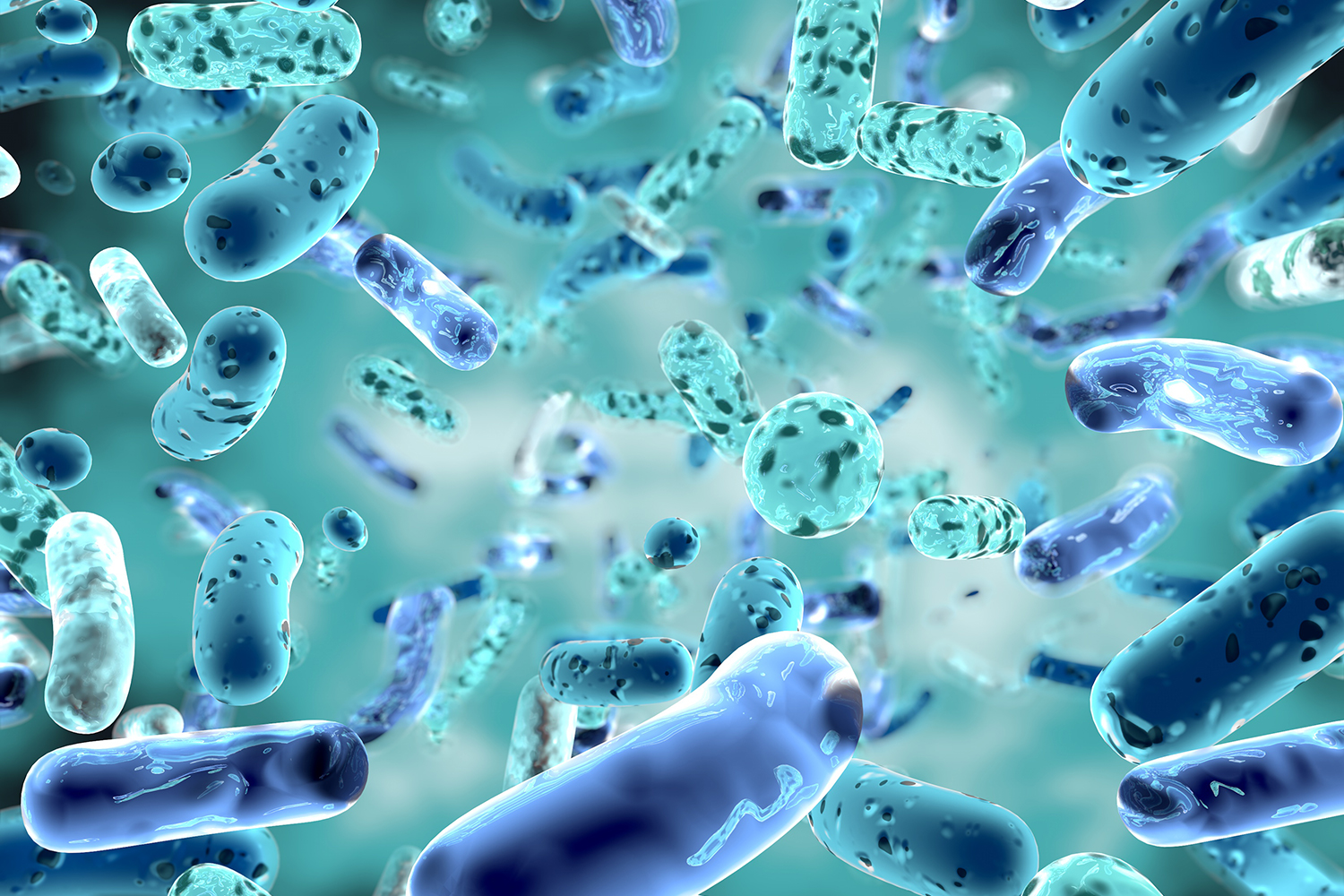 Stress test separates tough bacteria from the tender | Stanford News