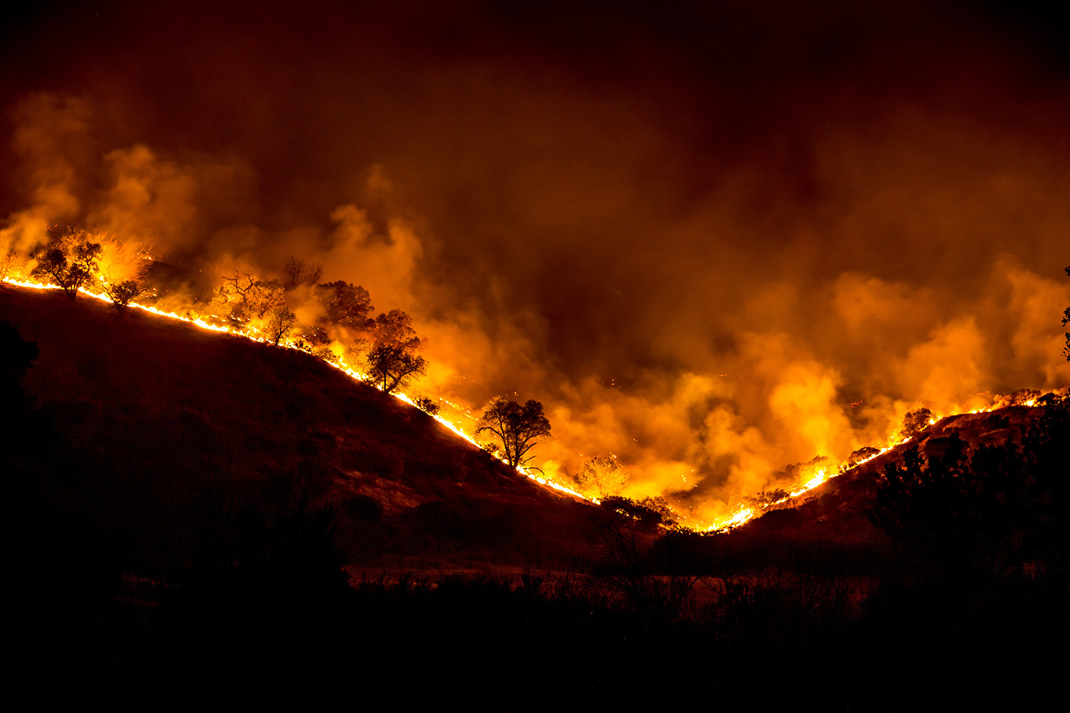 Stanford Poll Reveals That Californians Are Unwilling to Subsidize Wildfire Prevention