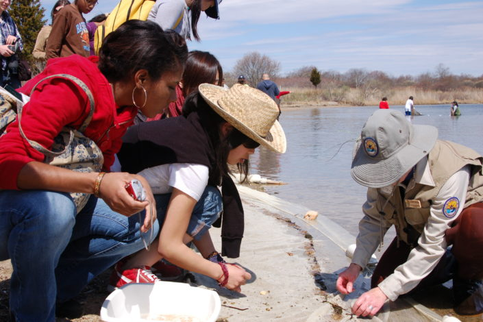People take part in an environmental education initiative at Ninigret National Wildlife Refuge in Rhode Island.)