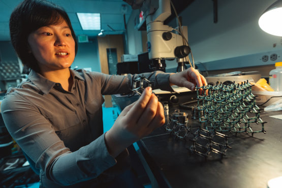 Stanford research maps a faster, easier way to build diamond
