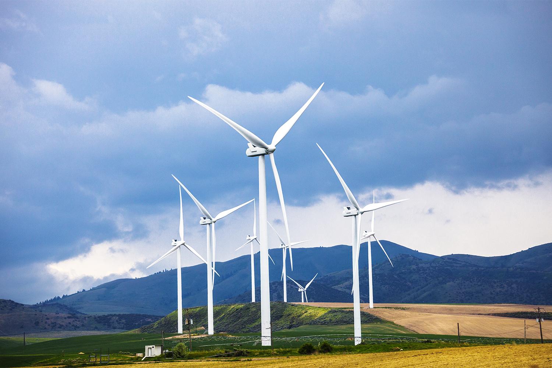 Simulating Wind Farm Development
