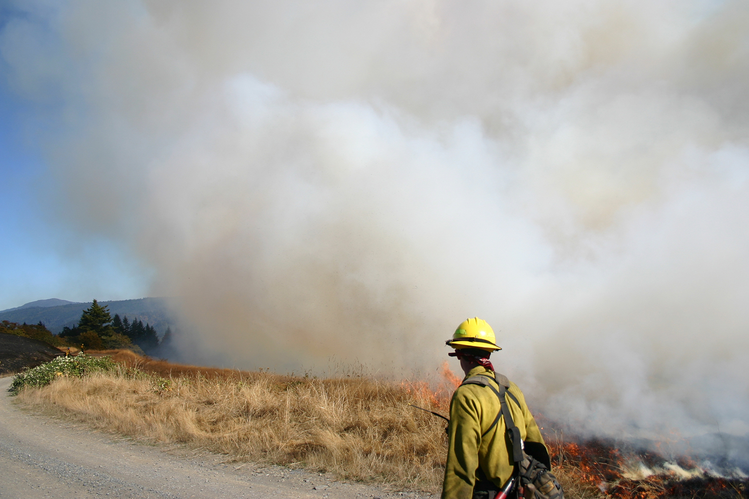 Wildfires' health impacts