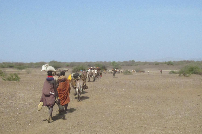 Nyangatom migrating