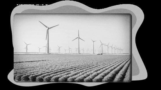 Image of a wind farm on an agricultural farm.