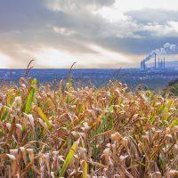 a power station near a corn field