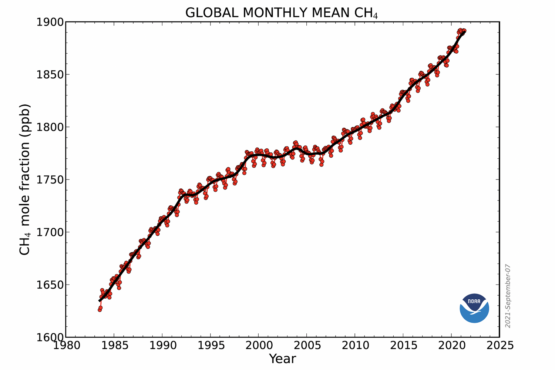 Methane: Potential of an overlooked climate change solution