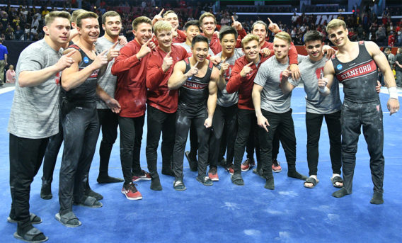 Stanford men's gymnastics