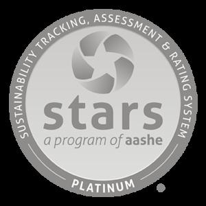 Stars Platinum Icon