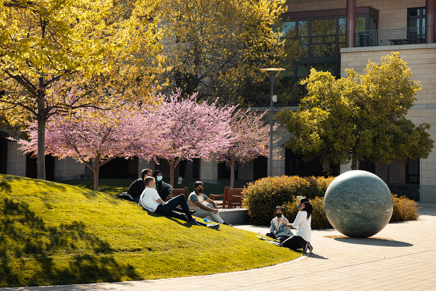 Stanford University announced its new school centered on climate and sustainability